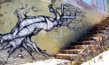 Tree, Valparaiso