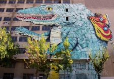 Girona Butterfly Croc